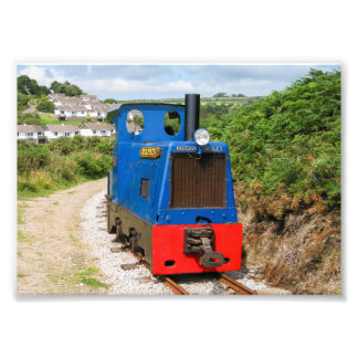 Dolphin on the Groudle Glen Railway Photo Print