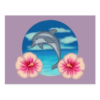 Dolphin Paradise Postcard