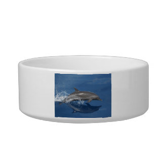 Dolphin Photo Cat Water Bowls