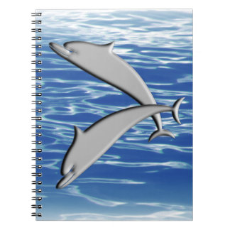 Dolphin Play Notebook
