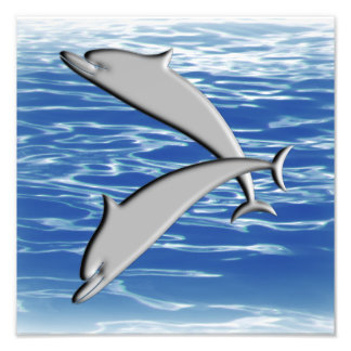 Dolphin Play Photo Print