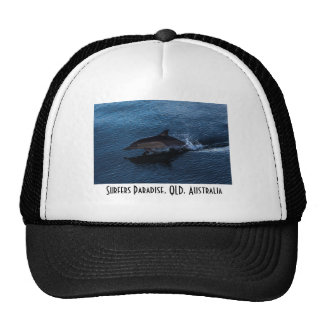 Dolphin Playing off Surfers Paradise Trucker Hat