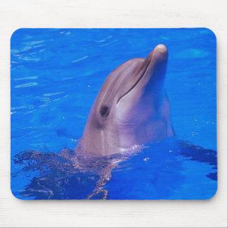 Dolphin Smiles Mousepad