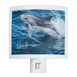 Dolphin Splashing Personalized Nite Lite