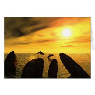 Dolphin Stones Card