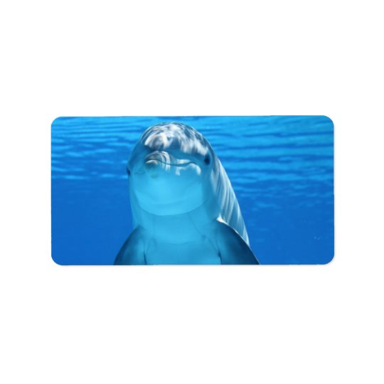 Dolphin Water Beach Tropical Paradise Island Fish Label