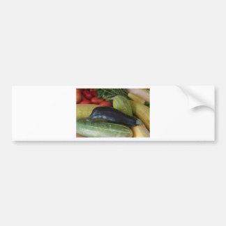 Dolphin Zucchini Bumper Sticker