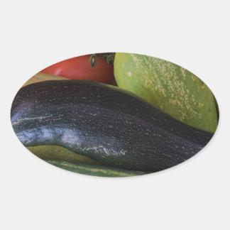 Dolphin Zucchini Oval Sticker