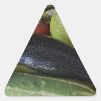 Dolphin Zucchini Triangle Sticker