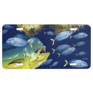 Dolphinfish (Mahi Mahi) in Habitat License Tag License Plate