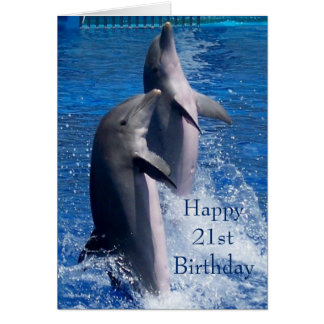 Dolphins 21st Birthday Card
