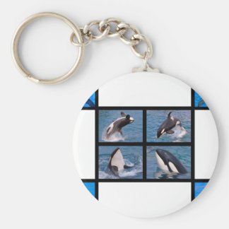 Dolphins and killer whales basic round button keychain