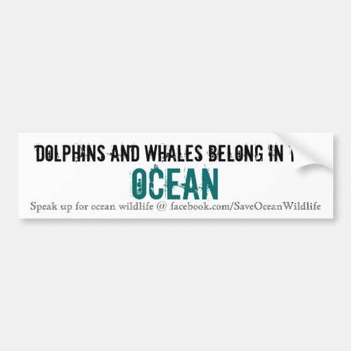 Dolphins and Whales Belong in the Ocean Bumper Sticker