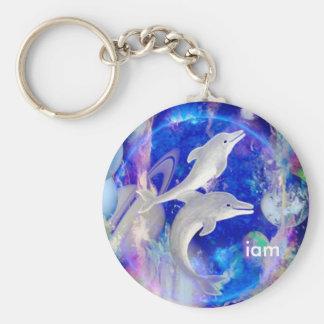 dolphins dreams 2, iam keychain