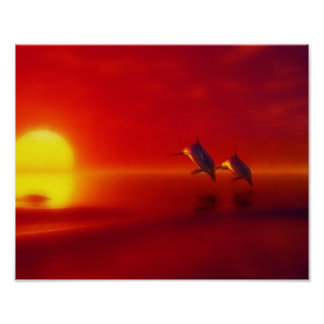 dolphins in the sunset poster