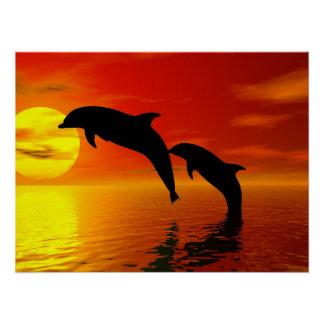 Dolphins Jumping Sunset Poster
