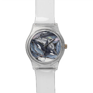 Dolphins, orcas, belugas and narvales clock watch