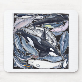 Dolphins, orcas, belugas and narvales mouse pad