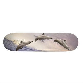 Dolphins Skateboard Decks