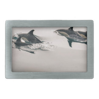Dolphins Swimming Rectangular Belt Buckles