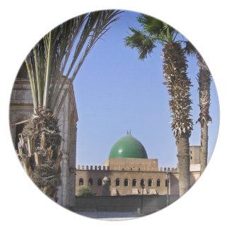 Dome of the Sultan Ali mosque in Cairo Plate
