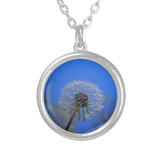 Dome Silver Plated Necklace