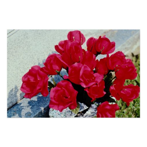 Domestic flowers, Stratford, Ontario, Canada Print
