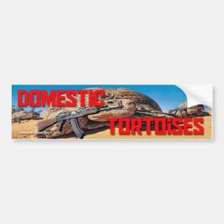 Domestic Tortoises Bumper Sticker