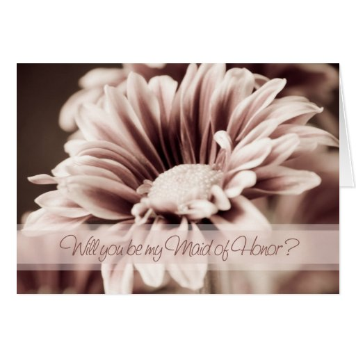 Domestique rose de photo de fleur de carte d'invit