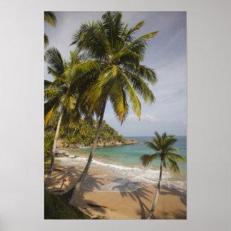 Dominican Republic, North Coast, Abreu, Playa Poster