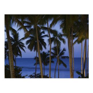 Dominican Republic, Samana Peninsula, Las Postcard