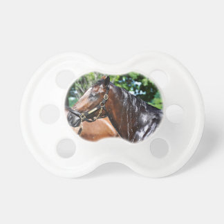 Dom's Pizza Empire Colt Baby Pacifiers