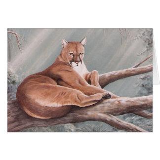 Don Corle-cougar Card