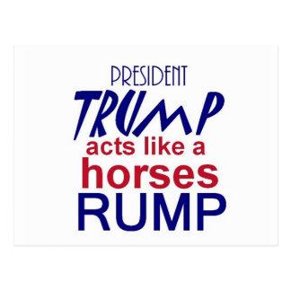 Donald TRUMP 2016 Postcard