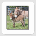 Donkey and Baby Square Sticker
