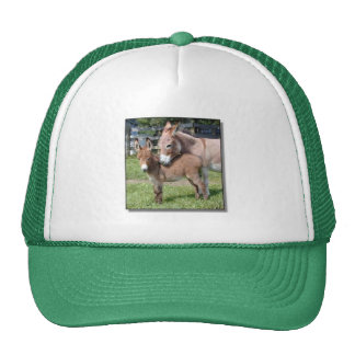 Donkey and Baby Trucker Hat