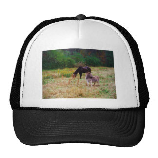 Donkey and horse in a Fall Field. Trucker Hat