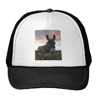 Donkey Art Trucker Hat