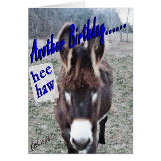 Donkey Birthday-customize it Card