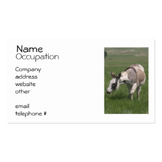 Donkey Business Cards