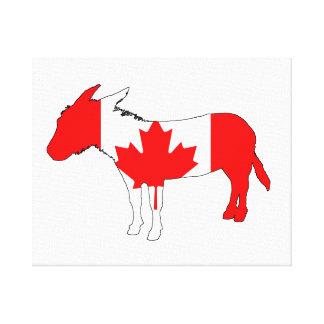 Donkey Canada Canvas Print