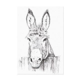 Donkey Canvas