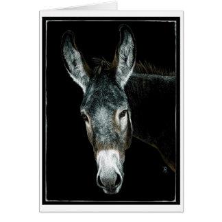 """Donkey Card - """"Rocky"""""""