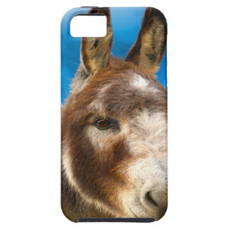 Donkey Case For The iPhone 5