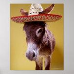 Donkey (Equus hemonius) wearing straw hat Print