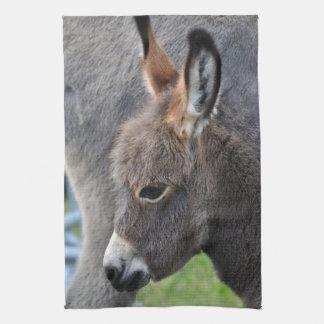 Donkey foal kitchen towel