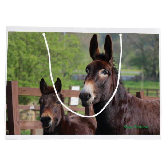 Donkey, Horse and a Mule Exclusive gift bag