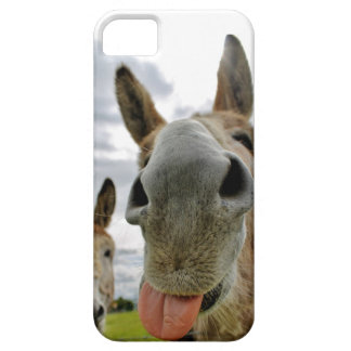 Donkey Humour iPhone 5 Covers
