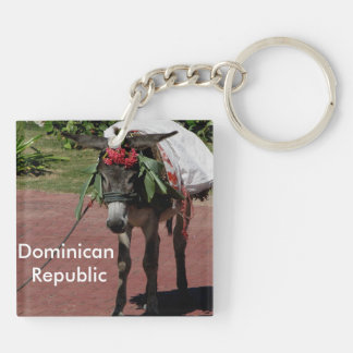 donkey in Dominican Republic Double-Sided Square Acrylic Keychain