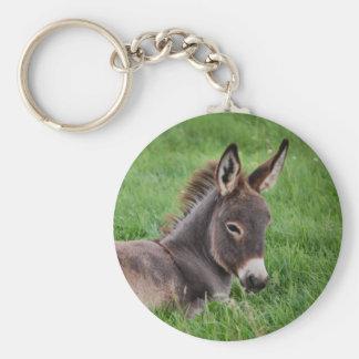 Donkey In The Grass Keychain